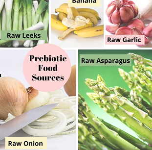PREBIOTICS – An Essential Ingredient for Digestive Health